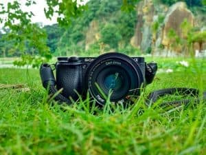 Best Mirrorless Cameras Under $500