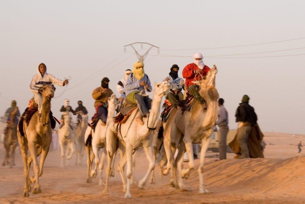 running camel