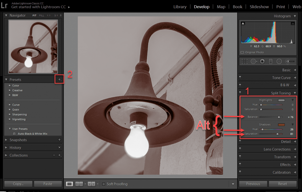 Scroll down to Split Toning, on the right navigation panel, here you can add a Sepia Tone