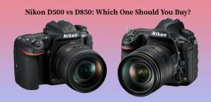 Nikon D500 vs D850