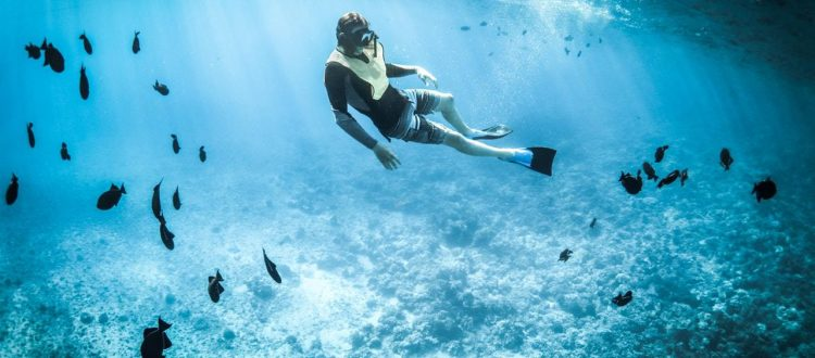 Photo of a Person Snorkeling